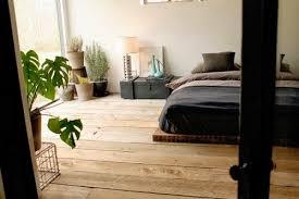 plante dans la chambre crea vegetal les plantes dans une chambre