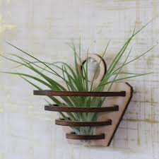 air plant holder large air plant laser cut by tamalegrandedesign