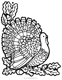turkey coloring page a to z stuff printable pages and