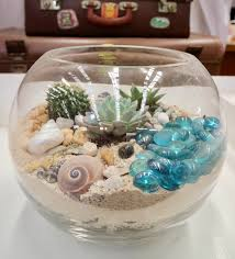 buy terrariums online bring nature indoors sydney florist same