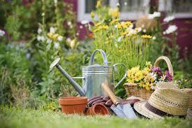 lottie newitt u0027s top tips spring prep in the garden