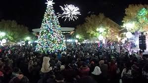 Deer Christmas Lights Christmas Redneck Christmas Lights Image Ideas 100 2900 Jpg