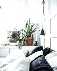 best plants for bedroom plants in bedroom ideas bedroom cool best minimal bedroom ideas on