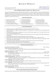 sample advertising manager resume charming idea director resume 9