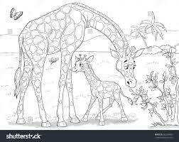 zoo animals africa giraffes cute mother stock illustration
