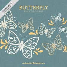 butterfly vectors photos and psd files free download