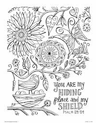 amazon com color the promises of god an coloring book for