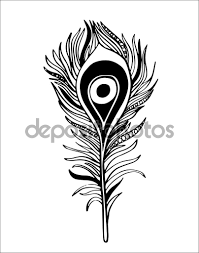 ornamental feather line zentangle inspired vector