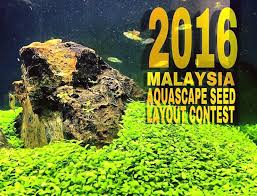 Aquascape Layout The Malaysia Aquascape Seed Layout Contest Atagaleri Net