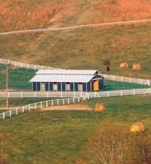6 horse barn design basics expert advice on horse care and horse