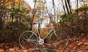 how to restore a bicycle beautiful vintage bike tips bike smarts