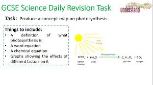 Photosynthesis Concept Map Photosynthesis Balanced Equation Jennarocca