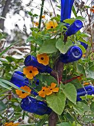 how to make a bottle tree hgtv