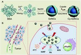 gadolinium based nanoscale mri contrast agents for tumor imaging