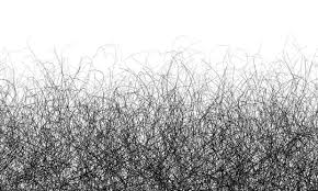 gray pubic hairs your first grey hair shocks your first grey pubic hair makes you