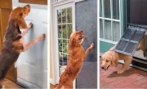 sliding glass door protection sliding glass door protector dog door for decoration