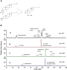 pattern of analysis fig 3 free sterol and sterol ester analysis by lc ms ms a