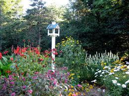 the bird and butterfly garden