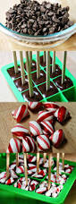 best 25 chocolate gifts ideas on pinterest chocolate
