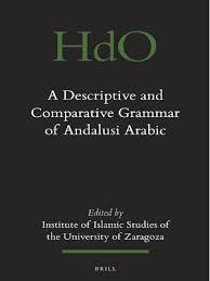 229701106 a descriptive and comparative grammar of andalusi arabic