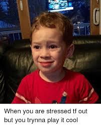 Tf Meme - 25 best memes about dont stress dont stress memes