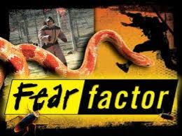 fear factor halloween party ideas ashley u0027s blog blog