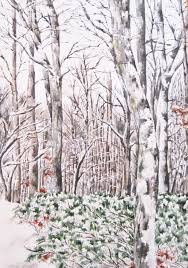 Lisa Fine Textiles by Landscapes