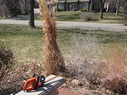 grass clean up grasstalk