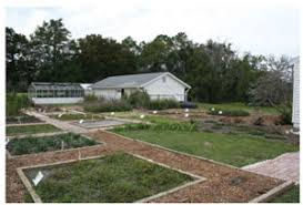 uf ifas extension florida friendly landscaping program hastings