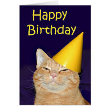 Cat Birthday Cards Ginger Cat Birthday Cards Greeting Photo Cards Zazzle