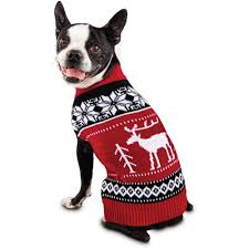 sweaters hoodies for large small dogs petco