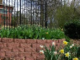 daylilies and spring bulbs the perfect combination garden org
