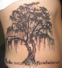 15 best images about on feathers tree tattoos