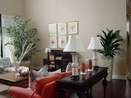 enchanting 60 plants for living room design decoration of best 10
