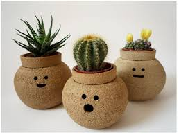 cute pots for plants fascinating creative pots for indoor plants gallery best