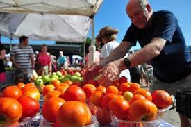 houston fruit tree sale urban harvest volunteer
