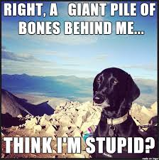 Trust Memes - trust issues meme on imgur