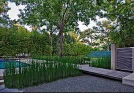 Modern Landscape Modern Landscaping Design Room 4 Interiors Lawn Ideas