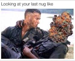 Memes About Smoking Weed - weed memes that don t suck funniest weed memes from around the web