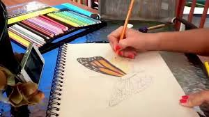 monarch butterfly time lapse drawing and coloring youtube