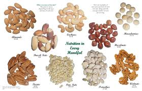 1 oz servings of different types of tree nuts almonds cashews