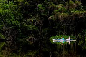 amazon jungle canoe expedition amazon rainforest ecuador