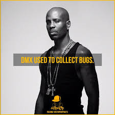 Dmx Meme - beautiful scarface and scarface meme on me wallpaper site