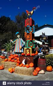 halloween farm display with pumpkins lemos farm half moon bay