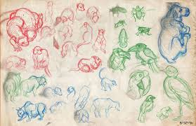 observation animal drawings from the zoo 5 30 u2014 weasyl