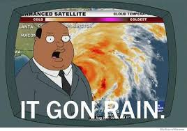 Florida Rain Meme - meanwhile in florida imgur