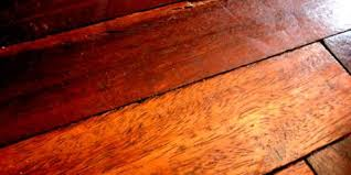 floor services shares 3 signs that you need hardwood floor