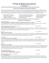 Resume Of Business Development Executive Download International Business Resume Objective