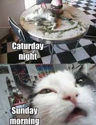 Sunday Morning Memes - saturday night sunday morning memes image memes at relatably com