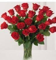 Dozen Of Roses Rose Flower In Mumbai Maharashtra Manufacturers U0026 Suppliers Of